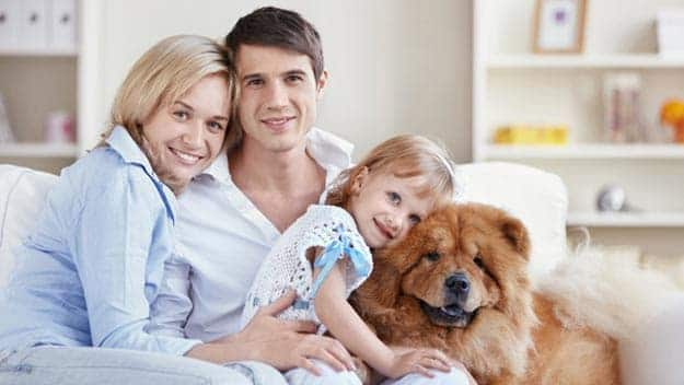 Wills & Trusts dog-young-family Direct Wills Hammersmith and Fulham